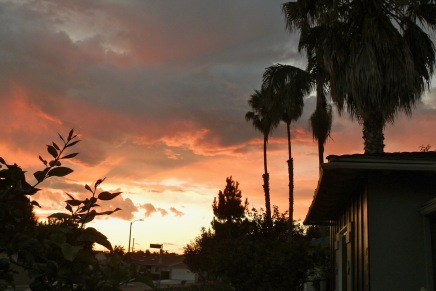Los Angeles Made Wild: Eloise Klein Healy, Artemis in EchoPark