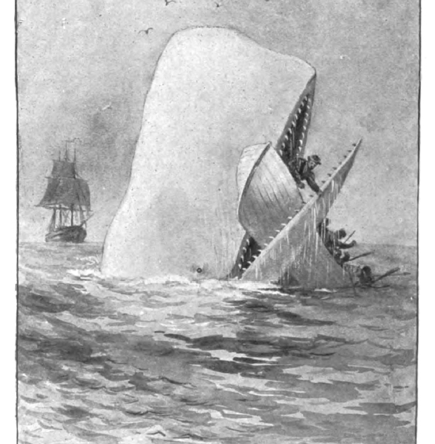 Herman Melville Meets Donald Trump
